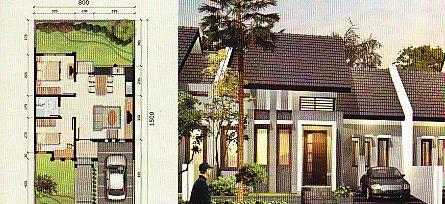 rumah denah tanah ukuran 8x15 meter gambar rumah rumah